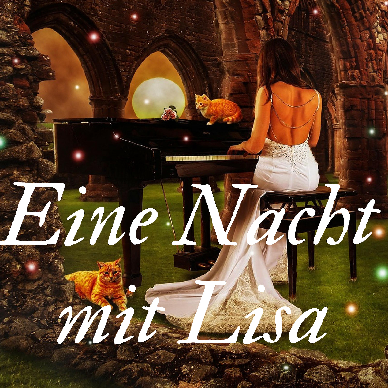 Eine Nacht mit Lisa Wiener Bar Pianisten